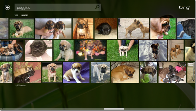 image_search_using_bing_app